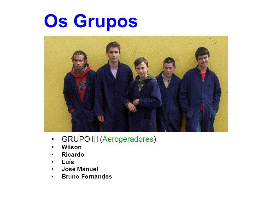 Os Grupos GRUPO III (Aerogeradores) Wilson Ricardo Luís José Manuel Bruno Fernandes