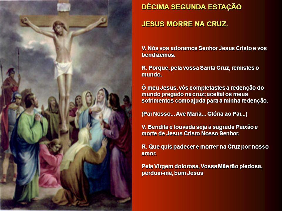 DÉCIMA PRIMEIRA ESTAÇÃO DÉCIMA PRIMEIRA ESTAÇÃO JESUS É PREGADO NA CRUZ. JESUS É PREGADO NA CRUZ. V. Nós vos adoramos Senhor Jesus Cristo e vos bendiz