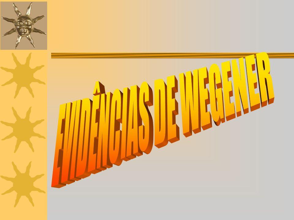GEOGRÁFICAS: AS LINHAS DA COSTA DE ALGUNS CONTINENTES ENCAIXAM PERFEITAMENTE.