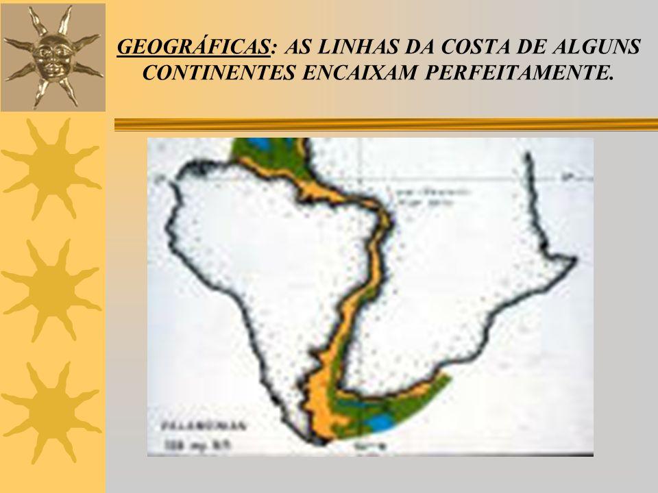 PALEONTOLÓGICAS: FÓSSEIS DE GLOSSOPTERIS