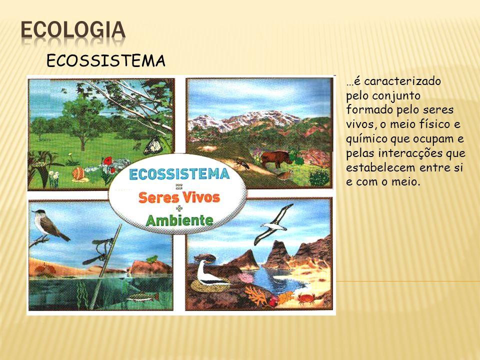 ECOSSISTEMA …é caracterizado pelo conjunto formado pelo seres vivos, o meio físico e químico que ocupam e pelas interacções que estabelecem entre si e