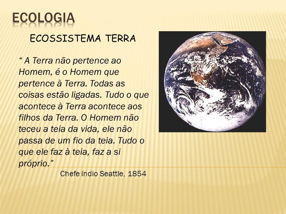 ECOSSISTEMA TERRA A Terra não pertence ao Homem, é o Homem que pertence à Terra. Todas as coisas estão ligadas. Tudo o que acontece à Terra acontece a