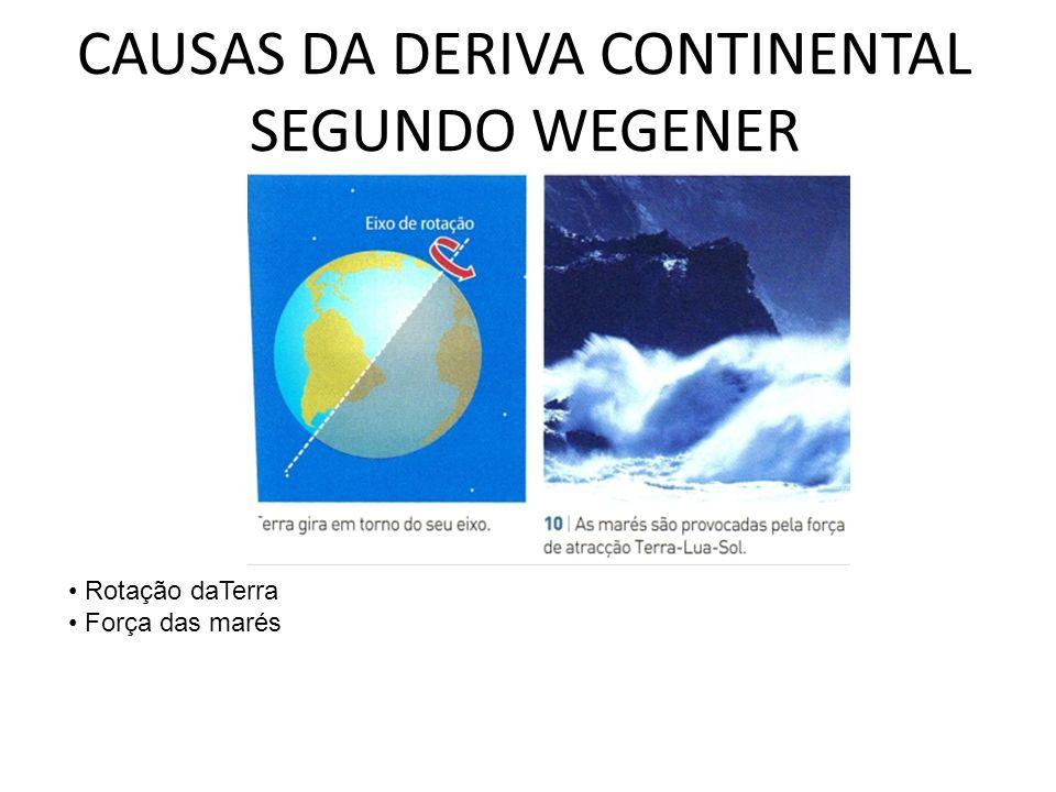 CAUSAS DA DERIVA CONTINENTAL SEGUNDO WEGENER Rotação daTerra Força das marés