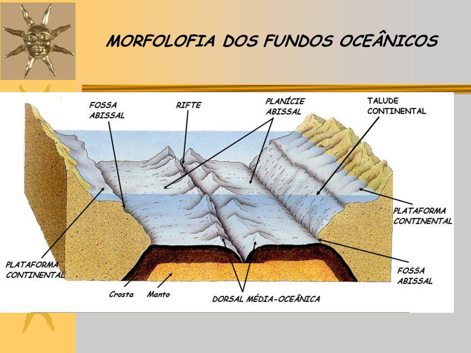 MORFOLOFIA DOS FUNDOS OCEÂNICOS