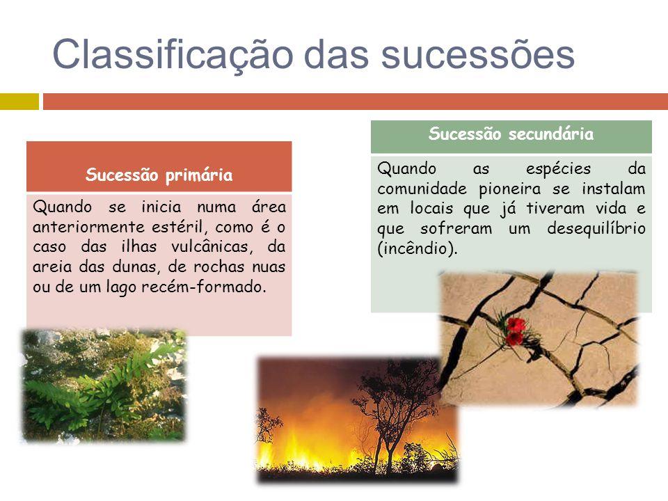 Classificação das sucessões Sucessão primária Quando se inicia numa área anteriormente estéril, como é o caso das ilhas vulcânicas, da areia das dunas