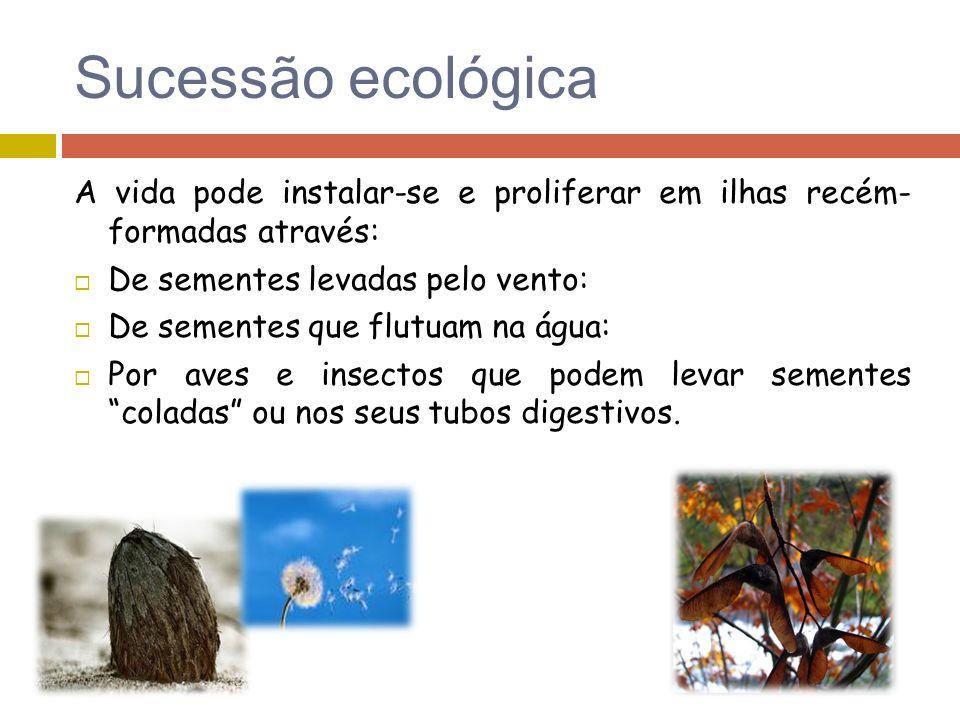 Sucessão ecológica A vida pode instalar-se e proliferar em ilhas recém- formadas através: De sementes levadas pelo vento: De sementes que flutuam na á