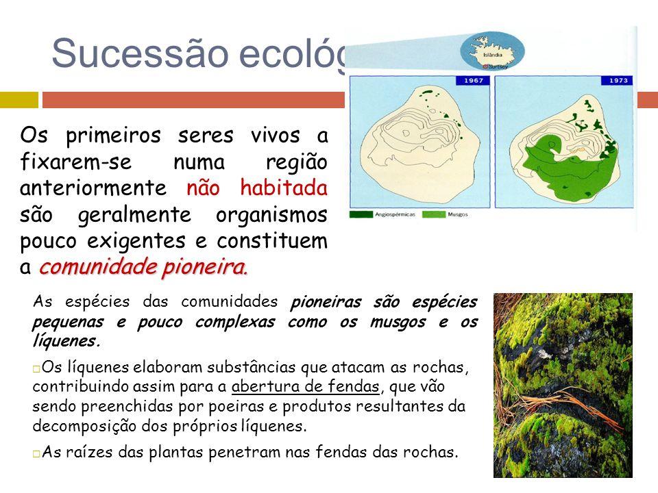 Sucessão ecológica As espécies das comunidades pioneiras são espécies pequenas e pouco complexas como os musgos e os líquenes. Os líquenes elaboram su