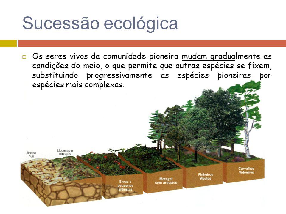 Sucessão ecológica Os seres vivos da comunidade pioneira mudam gradualmente as condições do meio, o que permite que outras espécies se fixem, substitu