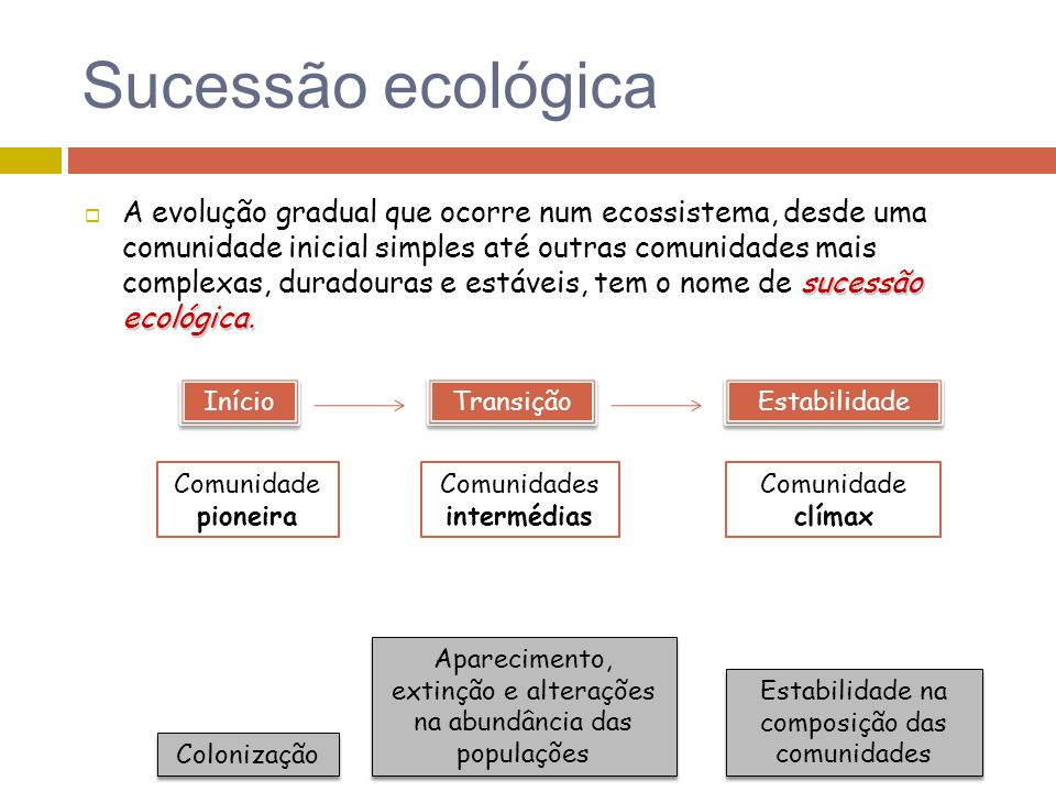 Sucessão ecológica sucessão ecológica. A evolução gradual que ocorre num ecossistema, desde uma comunidade inicial simples até outras comunidades mais
