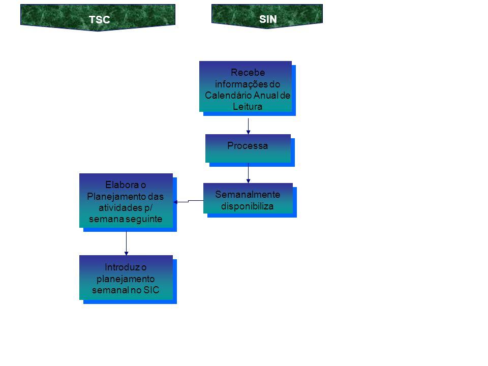 Recebe as informações do Planejamento Anual Elabora o Planejamento Diário, definindo itinerários a serem percorridos no dia seguinte Processa Diariamente disponibiliza Introduz o planejamento nos CGL`s SIN TSC Introduz o planejamento nos CGL`s