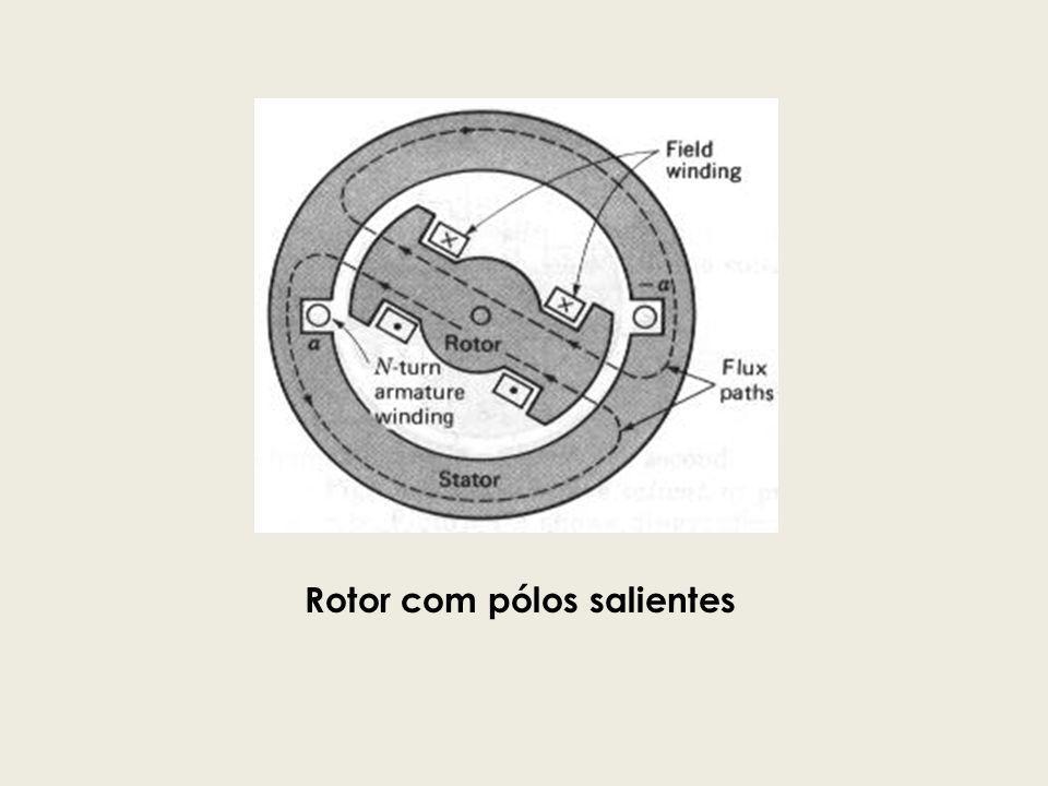 Rotor com pólos salientes