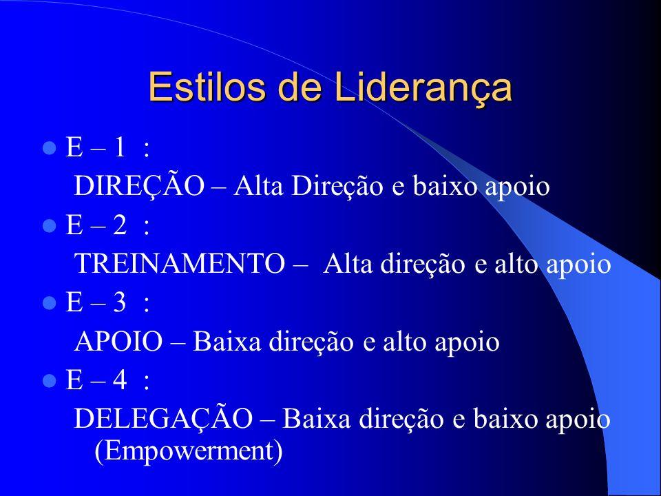 Estilos de Liderança E – 1 : DIREÇÃO – Alta Direção e baixo apoio E – 2 : TREINAMENTO – Alta direção e alto apoio E – 3 : APOIO – Baixa direção e alto apoio E – 4 : DELEGAÇÃO – Baixa direção e baixo apoio (Empowerment)