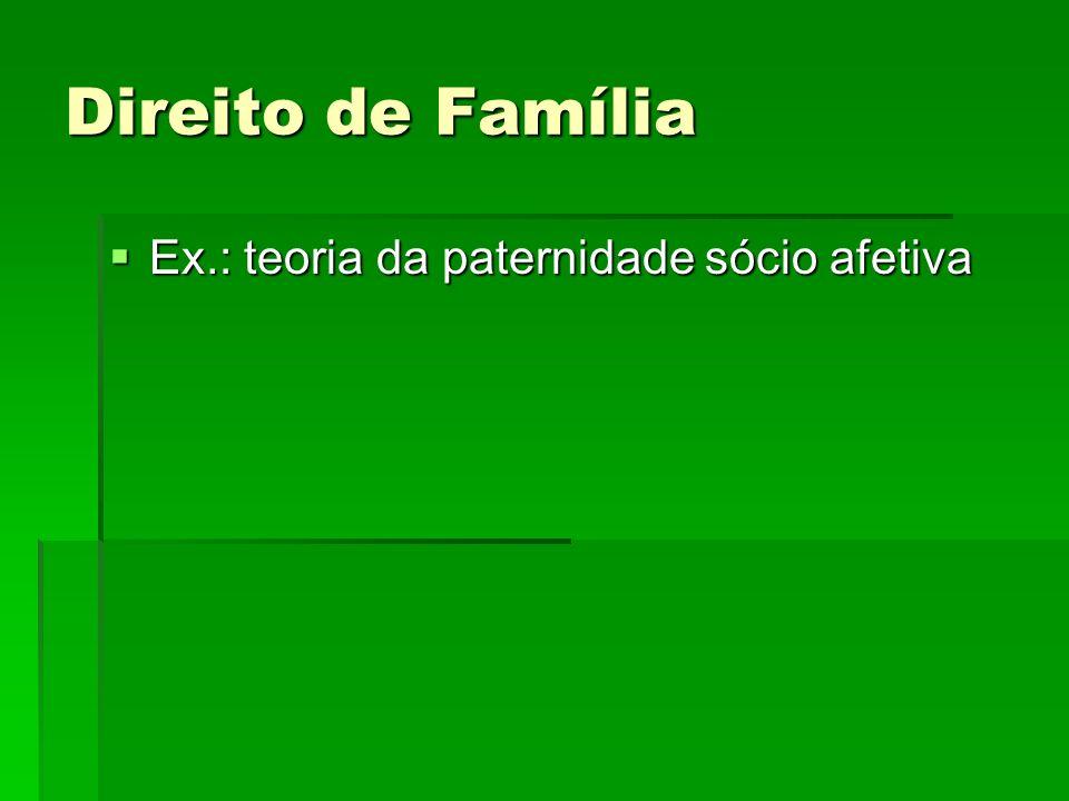 Direito de Família Ex.: teoria da paternidade sócio afetiva Ex.: teoria da paternidade sócio afetiva