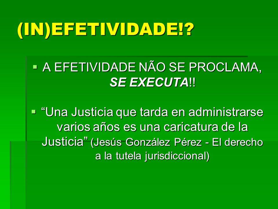 (IN)EFETIVIDADE!? A EFETIVIDADE NÃO SE PROCLAMA, SE EXECUTA!! A EFETIVIDADE NÃO SE PROCLAMA, SE EXECUTA!! Una Justicia que tarda en administrarse vari