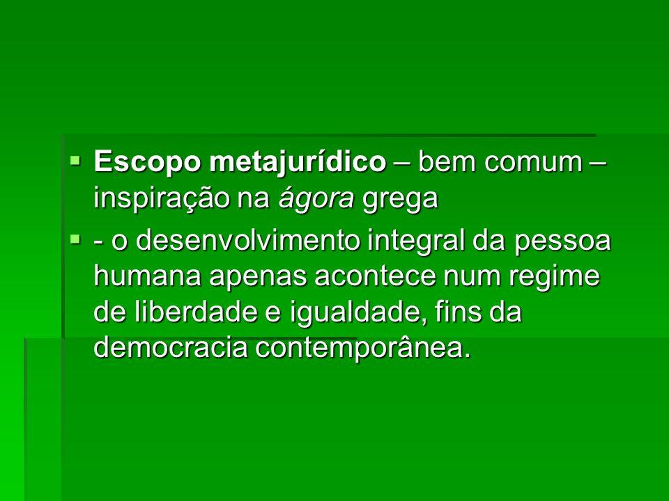 Escopo metajurídico – bem comum – inspiração na ágora grega Escopo metajurídico – bem comum – inspiração na ágora grega - o desenvolvimento integral d