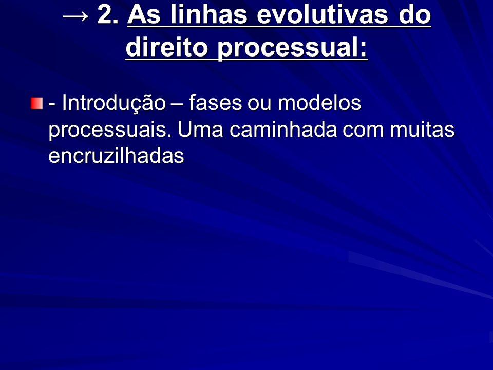 2. As linhas evolutivas do direito processual: 2. As linhas evolutivas do direito processual: - Introdução – fases ou modelos processuais. Uma caminha