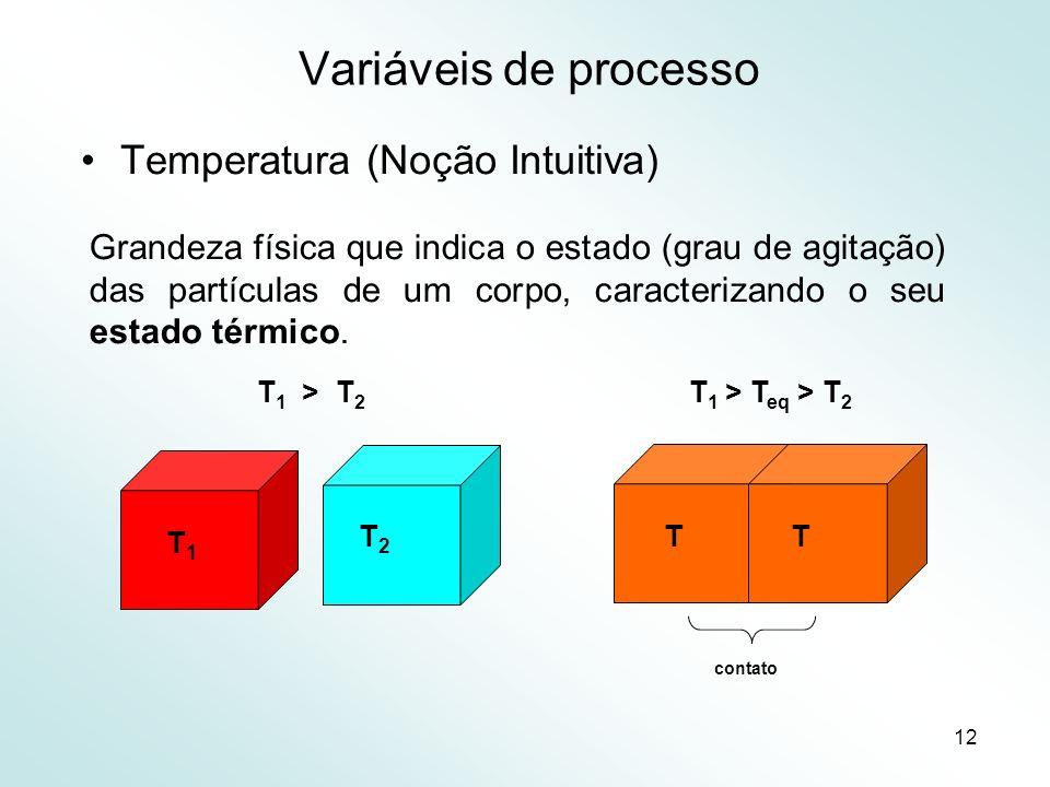12 Variáveis de processo Temperatura (Noção Intuitiva) Grandeza física que indica o estado (grau de agitação) das partículas de um corpo, caracterizando o seu estado térmico.