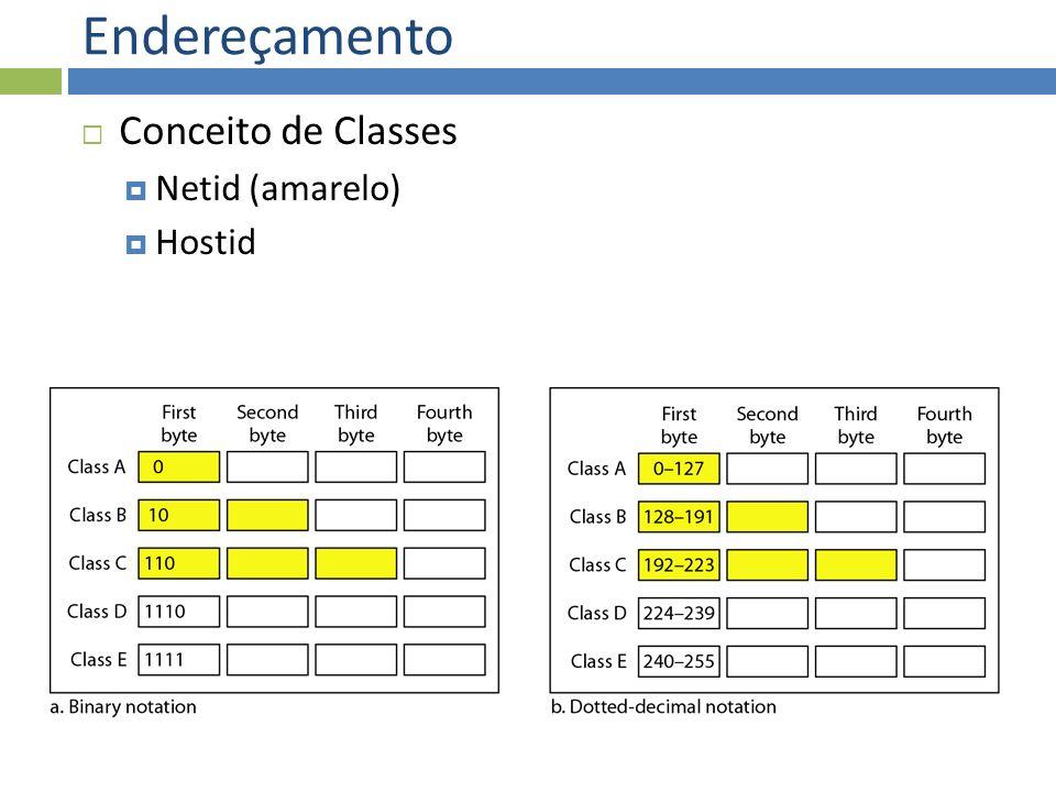 Endereçamento Conceito de Classes Netid (amarelo) Hostid