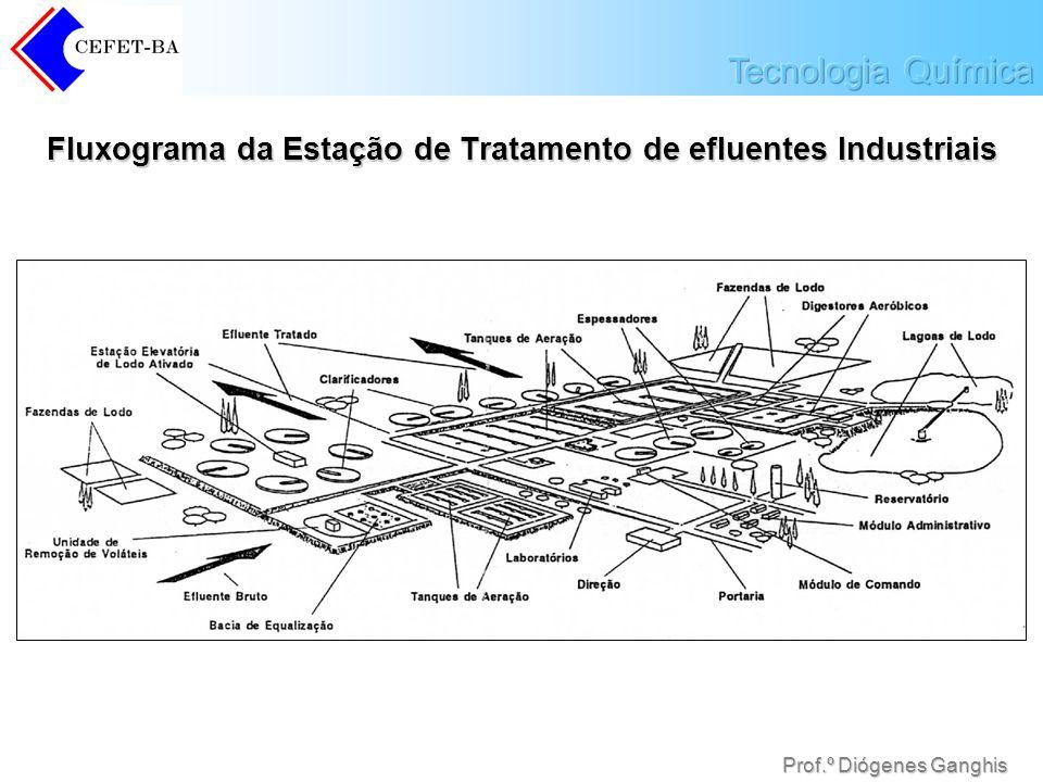 Prof.º Diógenes Ganghis Fluxograma da Estação de Tratamento de efluentes Industriais