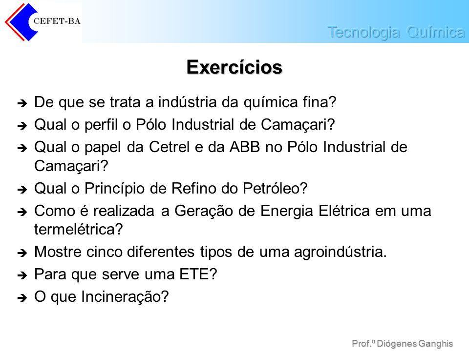 Prof.º Diógenes Ganghis Exercícios De que se trata a indústria da química fina? Qual o perfil o Pólo Industrial de Camaçari? Qual o papel da Cetrel e