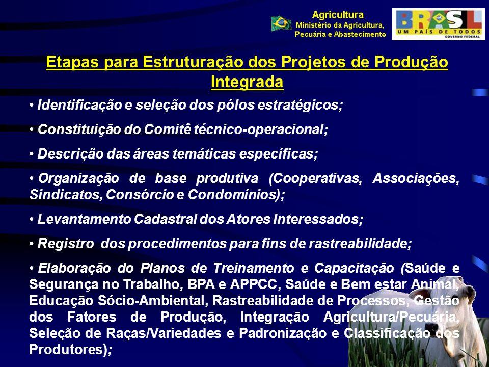 Etapas para Estruturação dos Projetos de Produção Integrada Identificação e seleção dos pólos estratégicos; Constituição do Comitê técnico-operacional