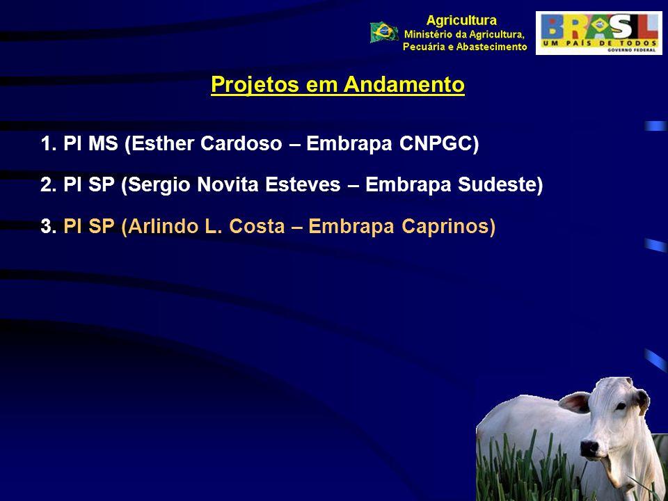 Projetos em Andamento 1. PI MS (Esther Cardoso – Embrapa CNPGC) 2. PI SP (Sergio Novita Esteves – Embrapa Sudeste) 3. PI SP (Arlindo L. Costa – Embrap