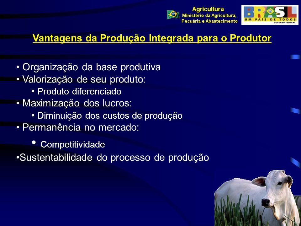 Vantagens da Produção Integrada para o Produtor Organização da base produtiva Valorização de seu produto: Produto diferenciado Maximização dos lucros: