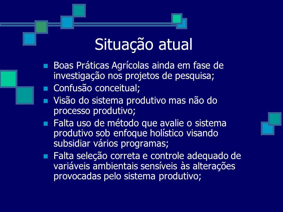 Situação atual Boas Práticas Agrícolas ainda em fase de investigação nos projetos de pesquisa; Confusão conceitual; Visão do sistema produtivo mas não