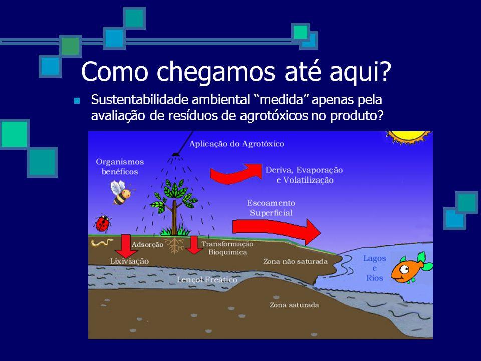 Como chegamos até aqui? Sustentabilidade ambiental medida apenas pela avaliação de resíduos de agrotóxicos no produto?