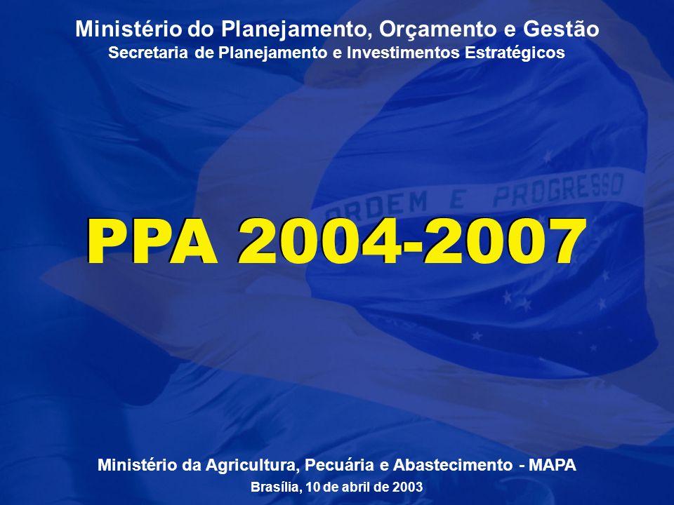 1 Ministério do Planejamento, Orçamento e Gestão Secretaria de Planejamento e Investimentos Estratégicos PPA 2004-2007 Ministério da Agricultura, Pecuária e Abastecimento - MAPA Brasília, 10 de abril de 2003