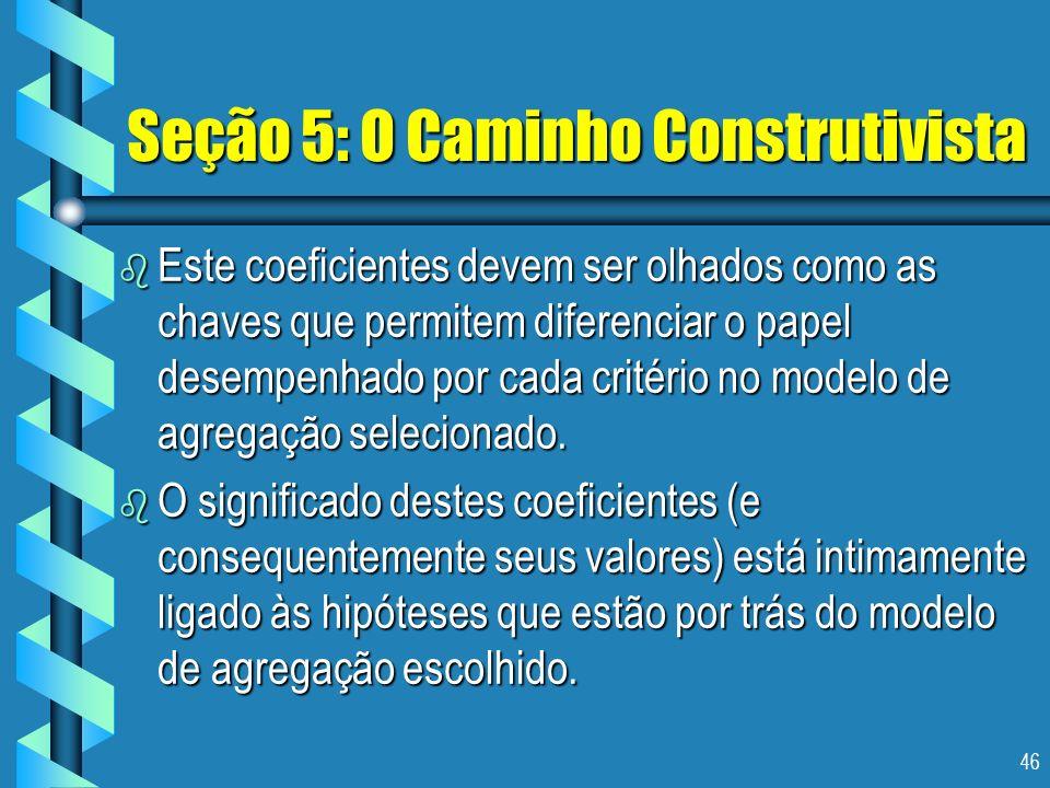 46 Seção 5: O Caminho Construtivista b Este coeficientes devem ser olhados como as chaves que permitem diferenciar o papel desempenhado por cada crité
