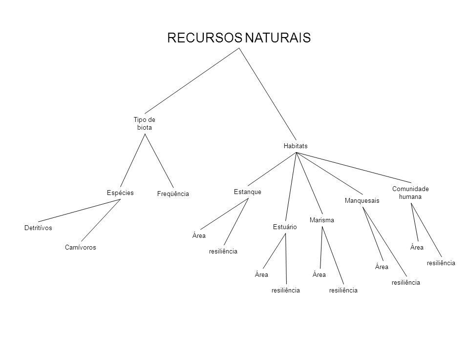 RECURSOS NATURAIS Tipo de biota Habitats Espécies Detritívos Carnívoros Freqüência Estanque Estuário Marisma Manquesais Comunidade humana Área resiliê