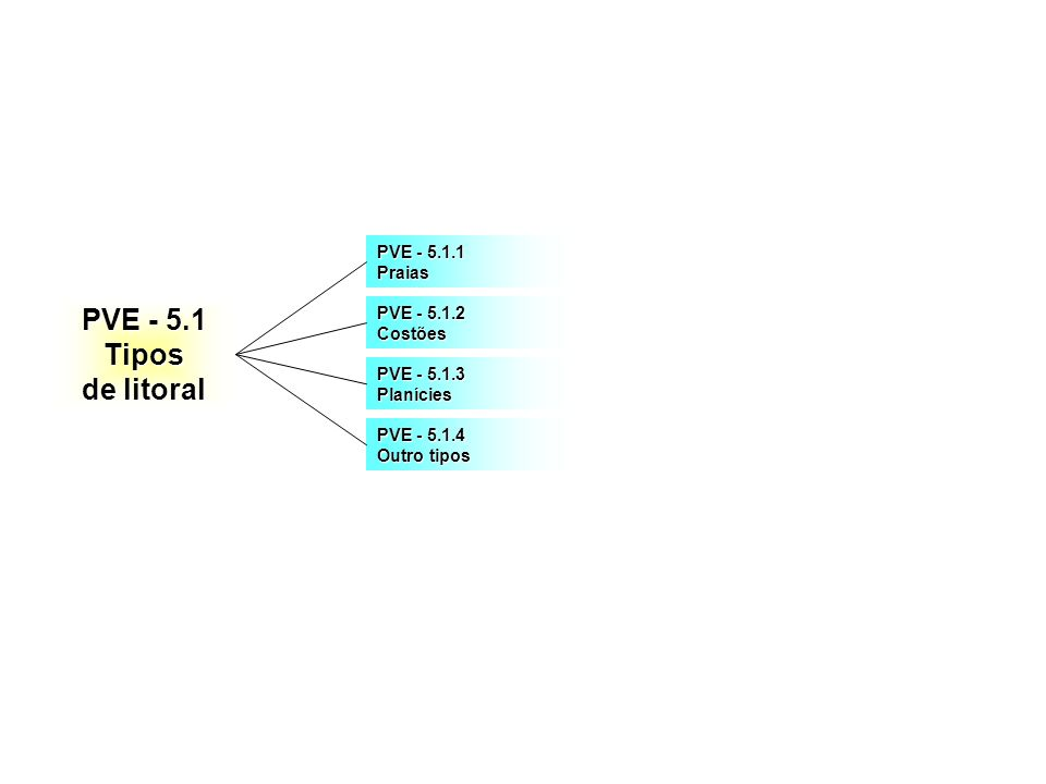 PVE - 5.1 Tipos de litoral PVE - 5.1.1 Praias PVE - 5.1.2 Costões PVE - 5.1.3 Planícies PVE - 5.1.4 Outro tipos