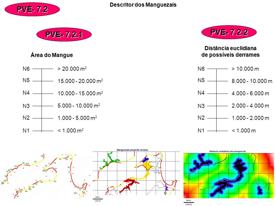 Descritor dos Manguezais Descritor dos Manguezais PVE- 7.2 PVE- 7.2.2 PVE- 7.2.1 N6 N5 N4 N3 N1 N2 < 1.000 m 2 1.000 - 5.000 m 2 5.000 - 10.000 m 2 10