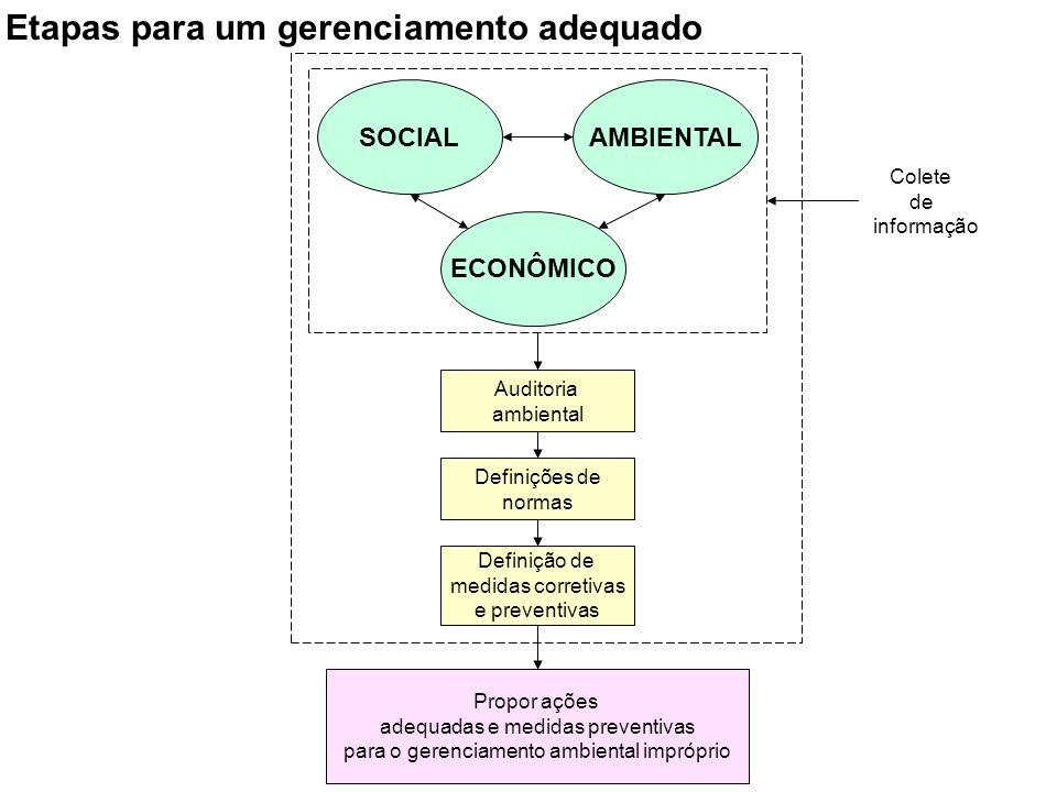 SOCIALAMBIENTAL ECONÔMICO Colete de informação Auditoria ambiental Definições de normas Definição de medidas corretivas e preventivas Propor ações ade