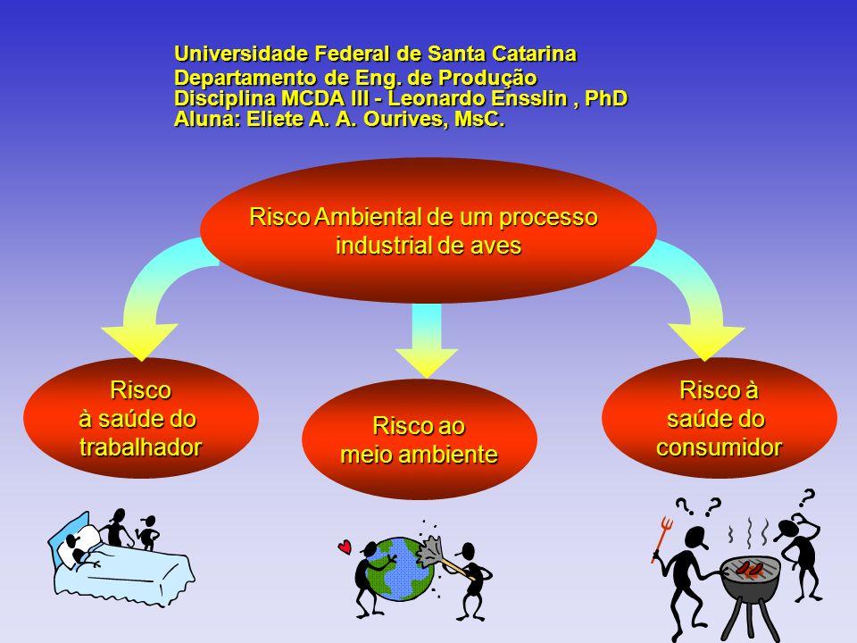 Risco à saúde do trabalhador Risco à saúde do consumidor Risco ao meio ambiente Universidade Federal de Santa Catarina Departamento de Eng. de Produçã