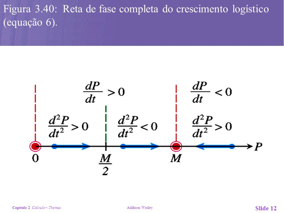Capítulo 2 Cálculo – Thomas Addison Wesley Slide 12 Figura 3.40: Reta de fase completa do crescimento logístico (equação 6).