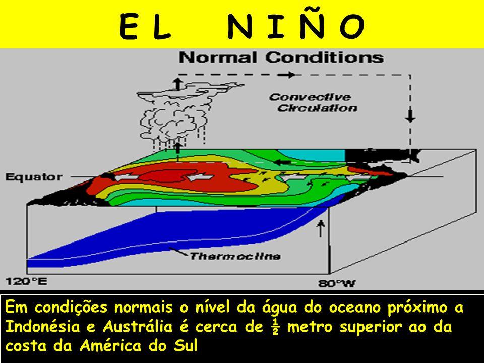 E L N I Ñ O Em condições normais o nível da água do oceano próximo a Indonésia e Austrália é cerca de ½ metro superior ao da costa da América do Sul