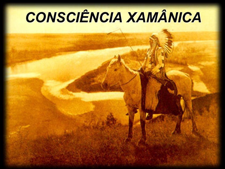 Para a cultura Xamânica não há separação, não há nada que seja inanimado.