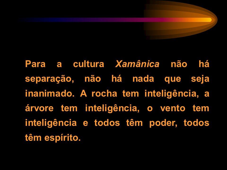 Para a cultura Xamânica não há separação, não há nada que seja inanimado. A rocha tem inteligência, a árvore tem inteligência, o vento tem inteligênci