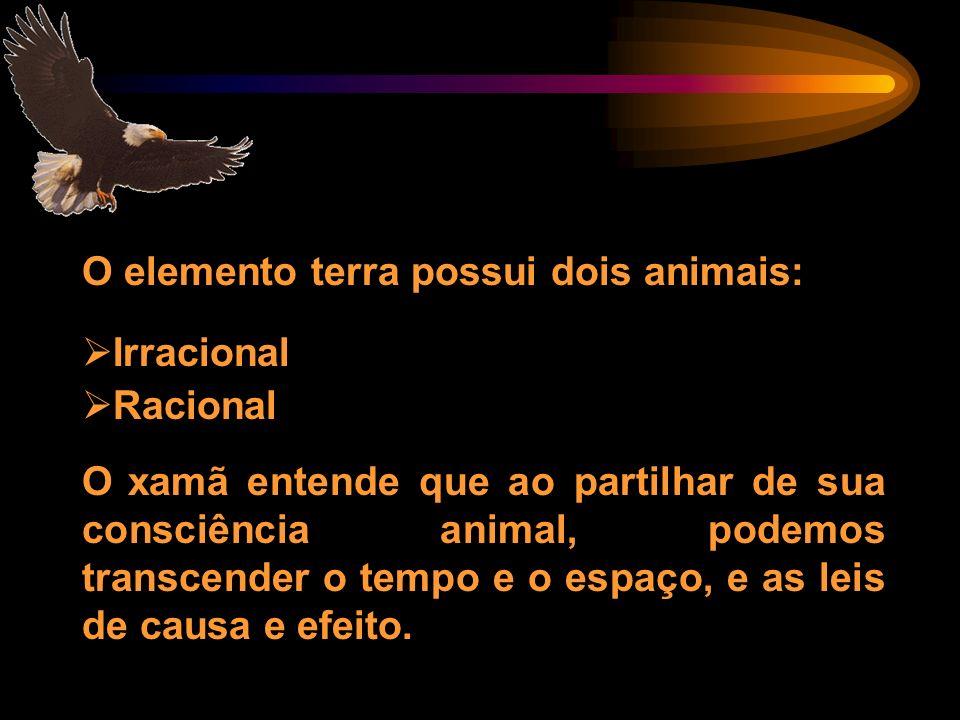 O elemento terra possui dois animais: Irracional Racional O xamã entende que ao partilhar de sua consciência animal, podemos transcender o tempo e o e