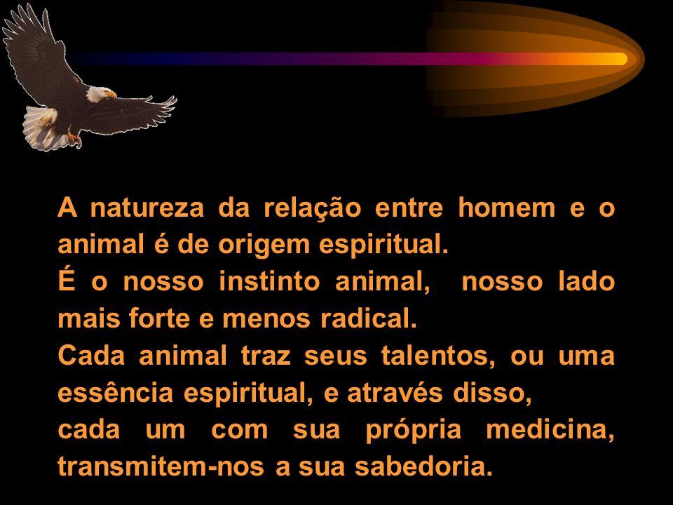 A natureza da relação entre homem e o animal é de origem espiritual. É o nosso instinto animal, nosso lado mais forte e menos radical. Cada animal tra