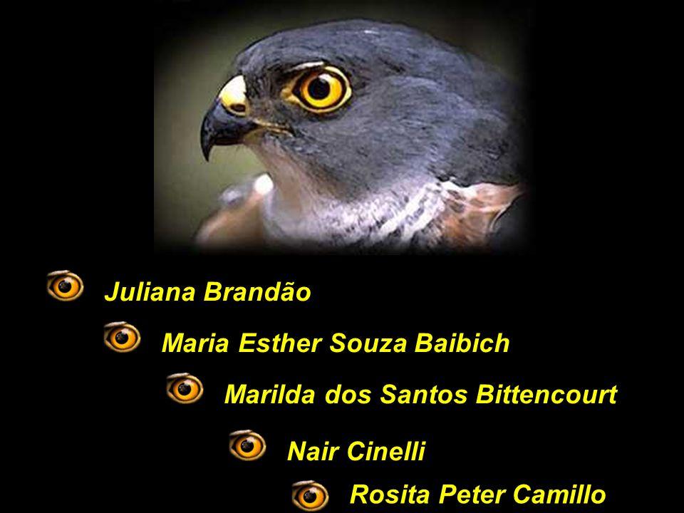 Rosita Peter Camillo Juliana BrandãoMaria Esther Souza BaibichMarilda dos Santos BittencourtNair Cinelli