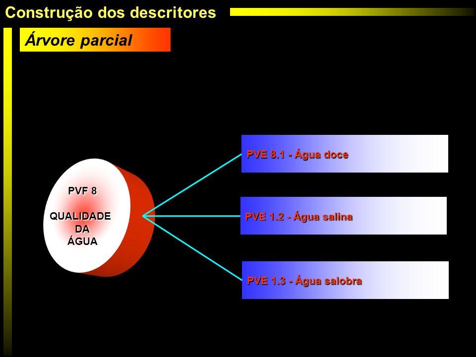 PVF 8 QUALIDADEDAÁGUA PVE 8.1 - Água doce PVE 1.2 - Água salina PVE 1.3 - Água salobra Árvore parcial Construção dos descritores