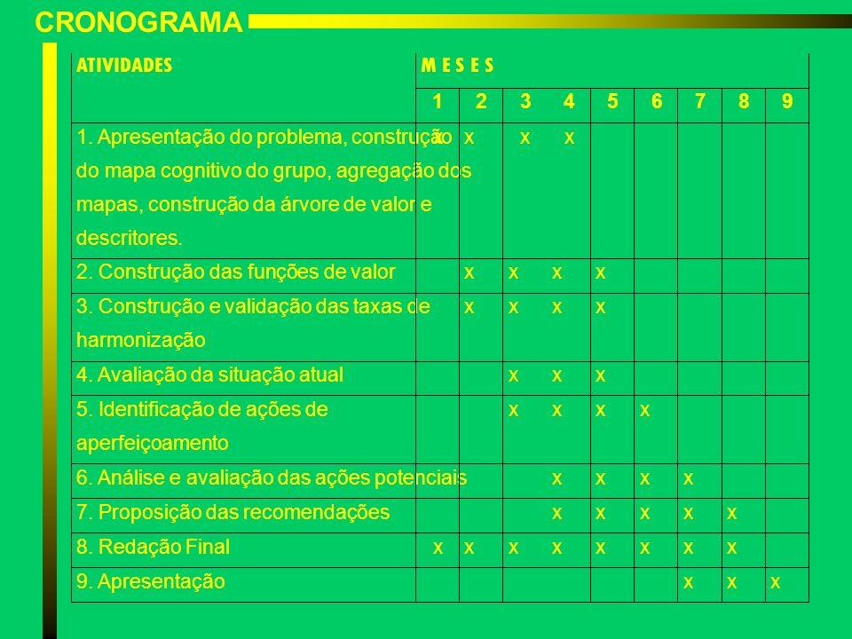 CRONOGRAMA ATIVIDADESM E S E S 123456789 1. Apresentação do problema, construção do mapa cognitivo do grupo, agregação dos mapas, construção da árvore