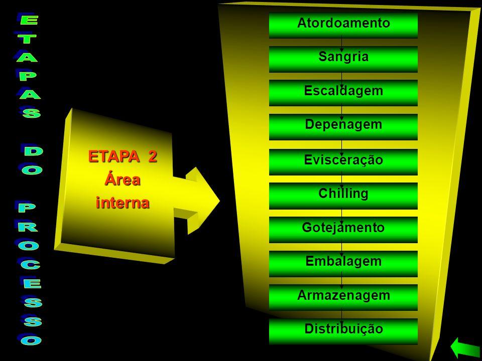 ETAPA 2 Áreainterna Atordoamento Sangria Depenagem Escaldagem Evisceração Chilling Gotejamento Embalagem Armazenagem Distribuição