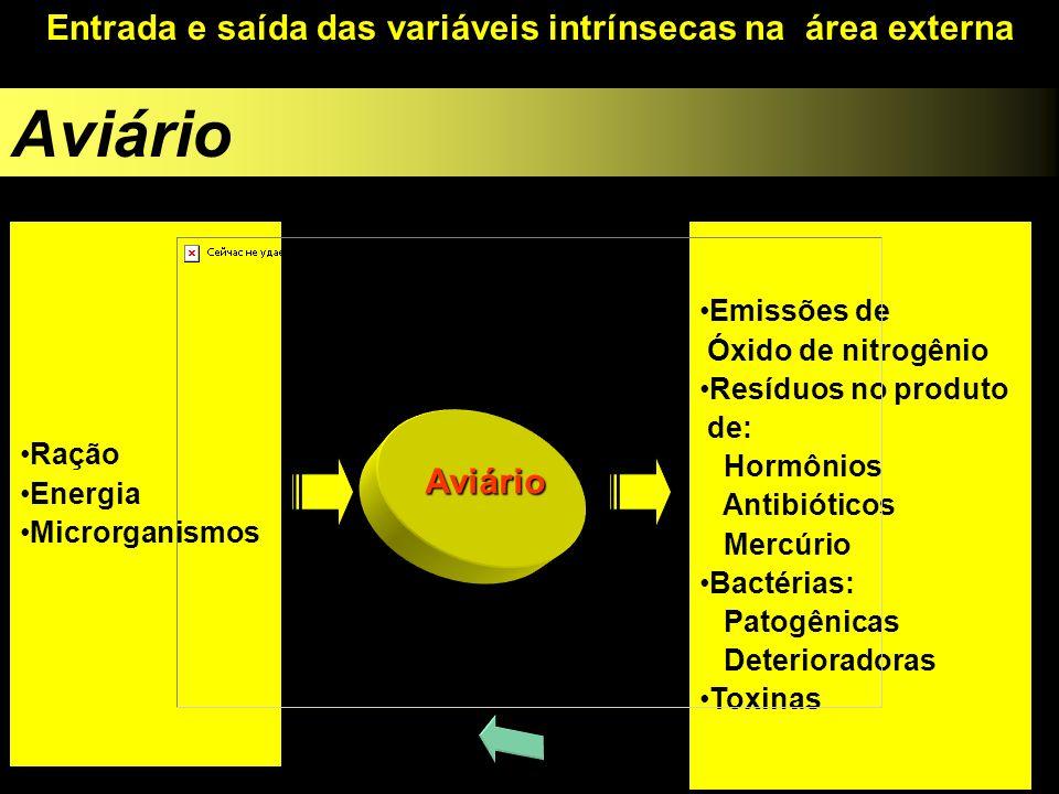 Entrada e saída das variáveis intrínsecas na área externa Ração Energia Microrganismos Emissões de Óxido de nitrogênio Resíduos no produto de: Hormôni