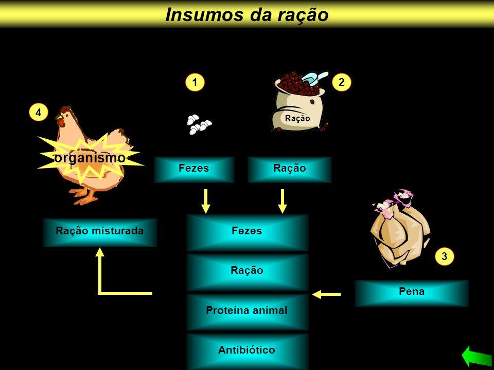 organismo Fezes Ração Proteína animal Antibiótico Ração misturada Pena Ração 21 3 4 Fezes Insumos da ração