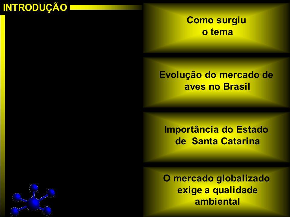Construção do mapa cognitivo Árvore de pontos de vista Construção dos descritores Construção da função de preferencias, construção da preferencias, construção da escala de preferência local, escala de preferência local, e determinação das taxas de compensação Identificação do perfil de impacto das ações e avaliação global das ações e avaliação global Análise de sensibilidade dos resultados Elaboração das recomendações Fasedeestruturação Fasedeavaliação Fasederecomendação Estrutura MCDA
