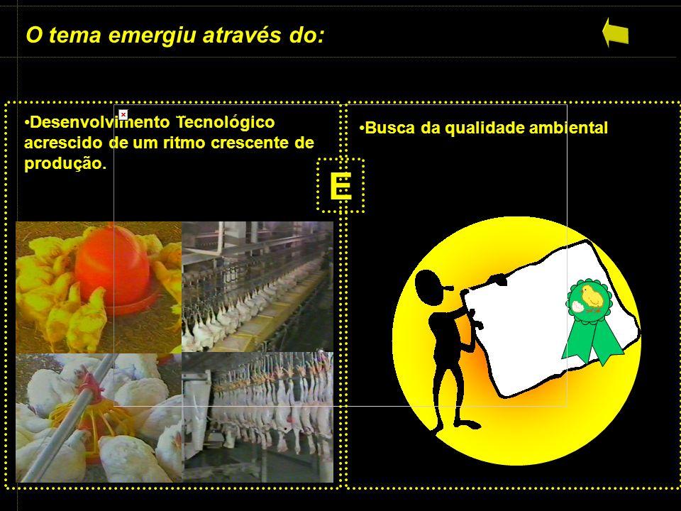 Identificação dos riscos Identificação do nível dos riscos Pontos de vulnerabilidade Monitoramento do PCC Verificação dos PCCS Identificação e quantificação de resíduos Classificação dos resíduos gerados Planejamento do destino dos resíduos Rotulagem das áreas As áreas identificadas Área 1 Área 2 Área 3 Área 4 Área 5 Área 6 Área 7 Área 8 Área 9 Análise do mapa cognitivo 1ª